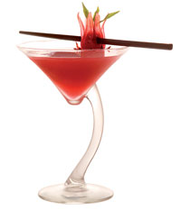 wild-hibiscus-cocktail-adam-and-eve-martini