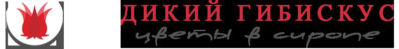Wild-Hibiscus Ukraine